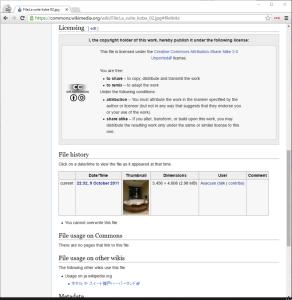 WikimediaCommon-kostenloseFotos